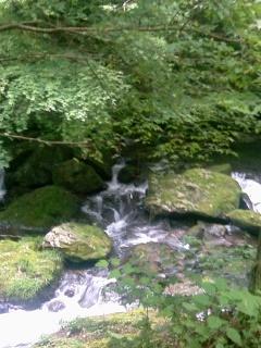 sei-river.jpg