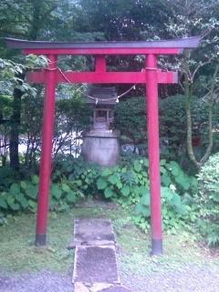 sei-torii.jpg